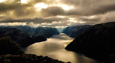 visual fjords cruise