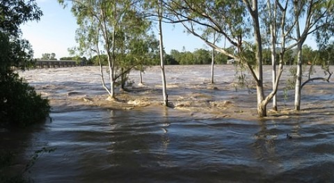 Walter P Moore releases flood protection paper