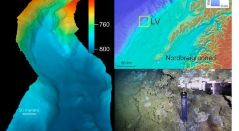 Fresh water found in the Norwegian Sea