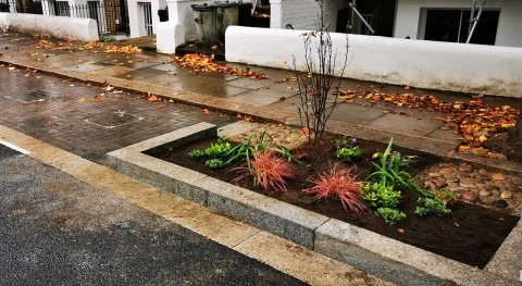 Thames Water rain gardens brighten London street, while protecting sewers from flooding