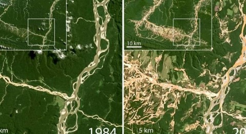 Gold mining critically impairs water quality in rivers across Peruvian biodiversity hotspot