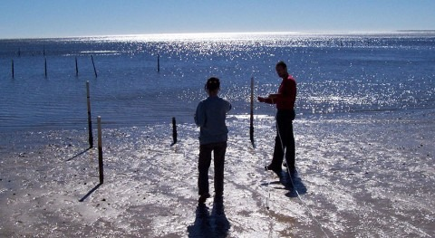 Groundwater discharge affects water quality in coastal waters