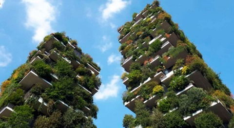 Peers sought to build urban resilience platform