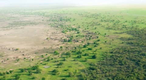 Great Green Wall receives over $14 billion to regreen the Sahel