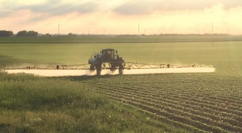Potential toxicity of pesticides to aquatic life in U.S. rivers is widespread