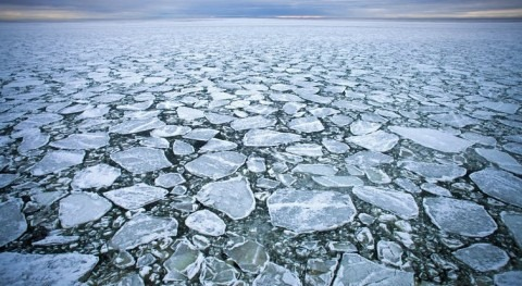 Microplastics may affect how Arctic sea ice forms and melts