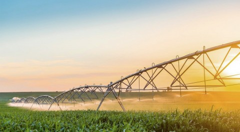 Smart irrigation and smart meters - top trends in the farming industry for 2021