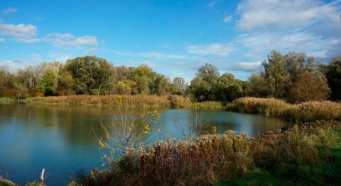 River backwaters to meet high water quality standards