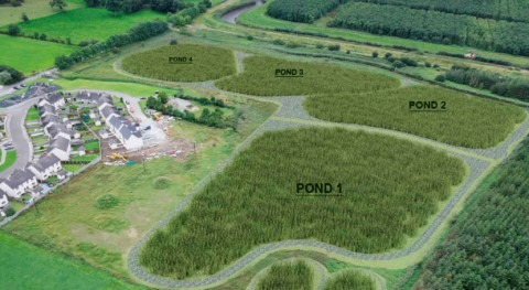 Irish Water invests €2 million in new Integrated Constructed Wetland