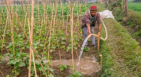 Grantees from South Asia awarded funds to develop innovations enhancing solar irrigation