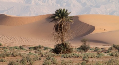 Researchers explore the effects of climate change on water shortages
