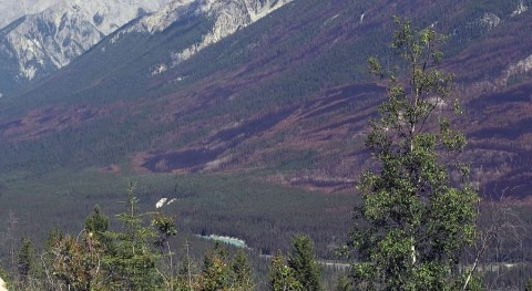 Canadian coal mines cause Kootenai river pollution in Montana and Idaho