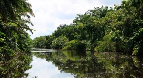 Honduras designates Laguna Alvarado as its 11th Wetland of International Importance