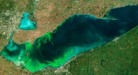 NOAA & partners predict large summer harmful algal bloom for western Lake Erie
