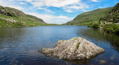 EPA reports third of Irish rivers and quarter of lakes fail water quality standards