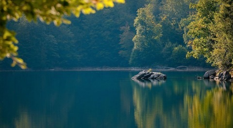 Lakes are changing worldwide