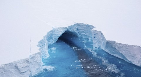 massive iceberg could impact island ecosystems in the southern Atlantic