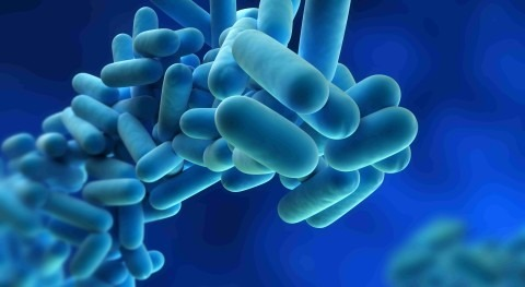 Reducing risk: eliminating legionella fears with smart technology