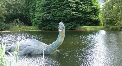 Could the Loch Ness monster be giant eel?