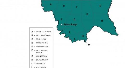 Transcending boundaries in Louisiana watershed management