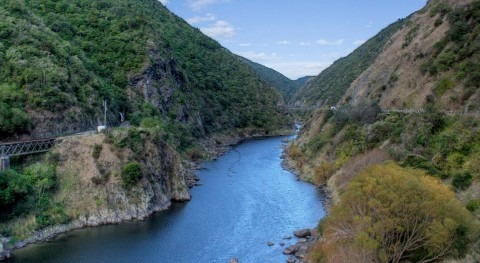 New Zealand river water quality trends show there's still long way to go