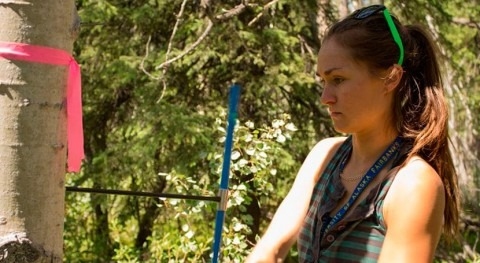 Drought affects aspen survival decades later, new NAU study finds