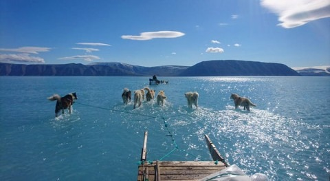 Time will tell if this is record summer for Greenland ice melt