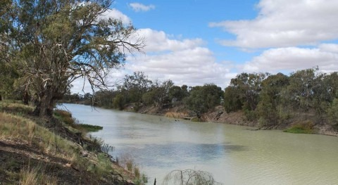 Twenty per cent less water in Murray-Darling rivers than expected under Basin Plan