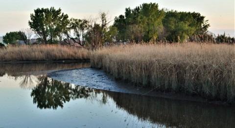 Mercury pollution still problem in New Jersey meadowlands waters