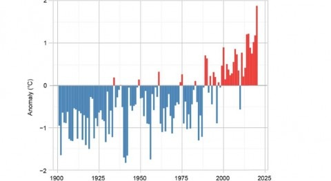 Europe experiences warmest year on record in 2020