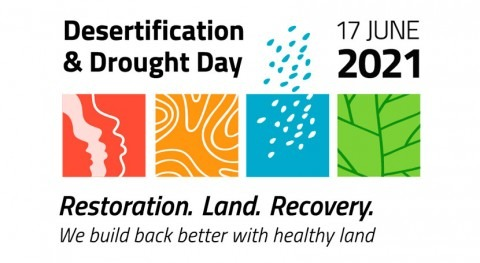 17 June: Desertification and Drought Day