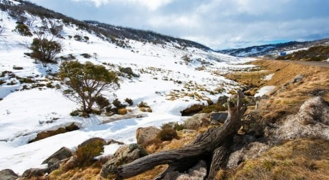 1,600 years ago, climate change hit the Australian Alps. We studied old lake mud to learn about it
