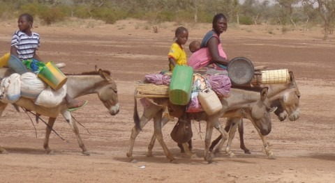 What do desertification and women have to do with each other?