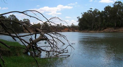 Australia's inland rivers are the pulse of the outback. By 2070, they'll be unrecognisable