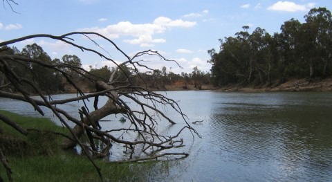 What is the longest river in Australia?