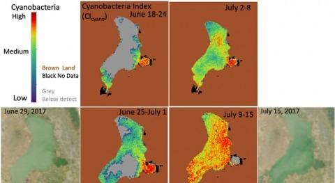 NASA releases new dataset of cyanobacteria in over 2,300 lakes in the U.S.