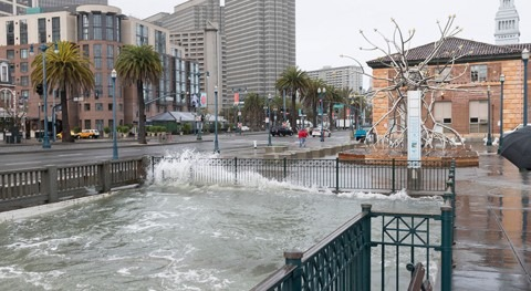 Sea level projections drive San Francisco's adaptation planning