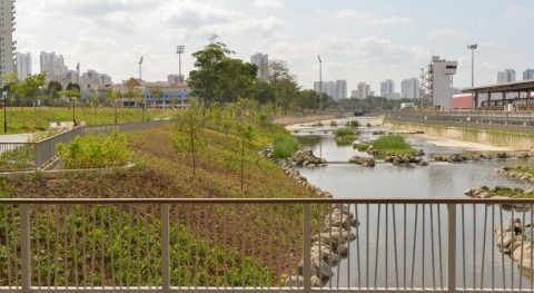 Singapore's longest river given new lease of life