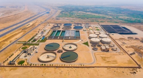 Water sector partnerships: roadmap for contributing to the SDGs