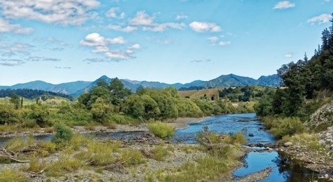 Study: New Zealand's rivers quality have way to go