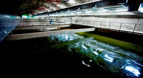 NIB finances improved wastewater treatment for Stockholm