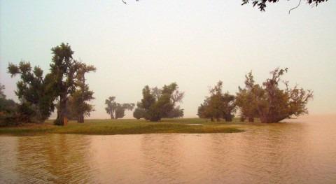 Niger designates two Wetlands of International Importance