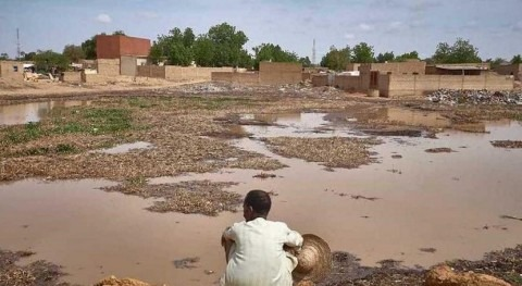 Niger: and partners assist vulnerable people in midst of natural disasters and cholera outbreak