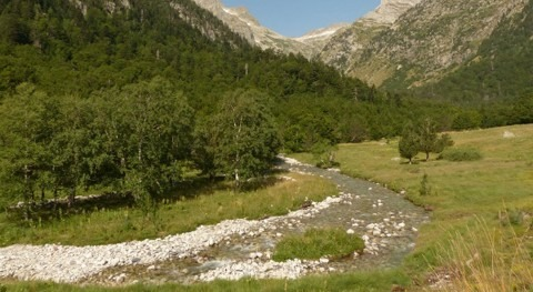 Natural river basins network in Spain should expand to protect biodiversity in rivers