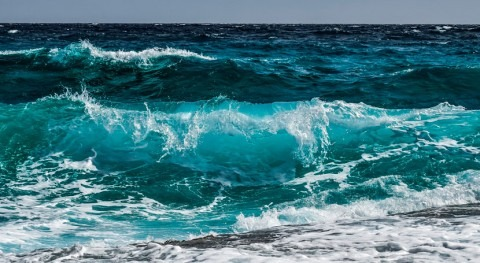 The first wave-driven desalination system