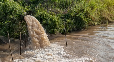 Urban stormwater study finds little difference between managed, unmanaged flows