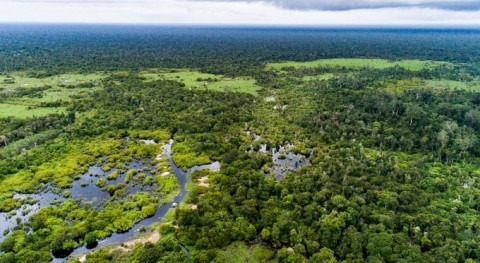 The human health benefits of conserving and restoring peatlands