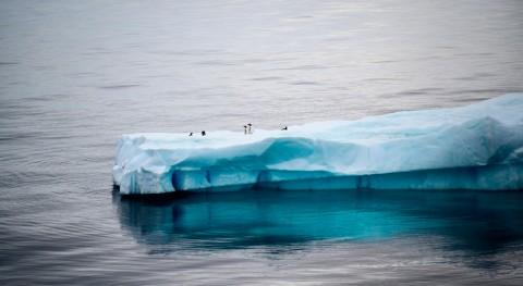 Antarctic rainfall could increase through 2100