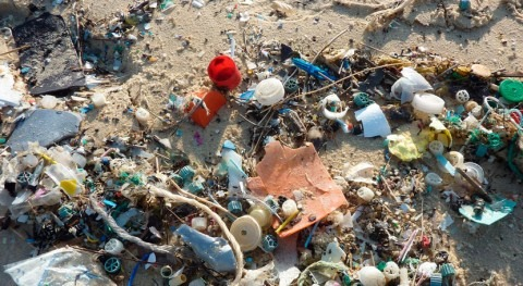 Accountability can reverse plastic pollution crisis