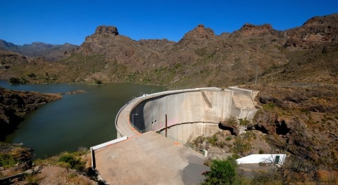 Numerical model for the analysis of the dynamic response of the Soria Dam [Island of Gran Canaria]